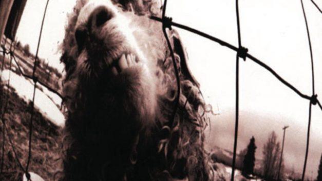 VS – Pearl Jam (1993)